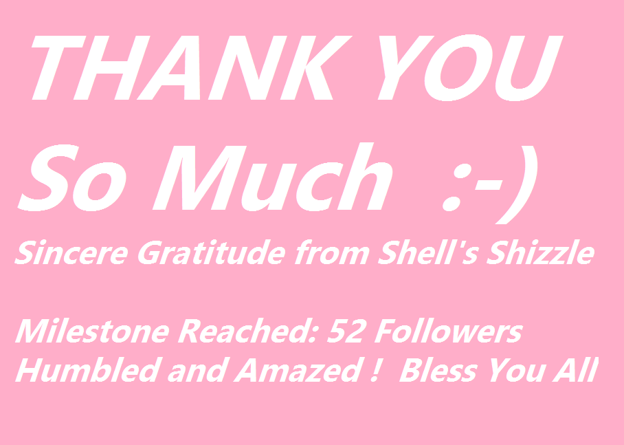 Gratitude from Shells Shizzle